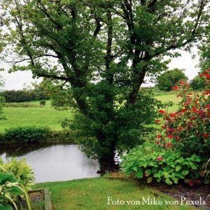 Ökologisch nachhaltig und naturnah