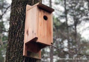 Nistkästen – hoch gehängt mit hohen Ansprüchen